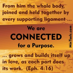 Connected to One Another in the Body of Christ