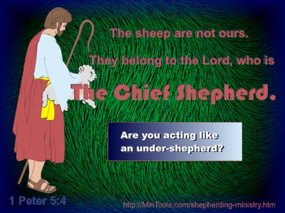 Shepherding Ministry & the Chief Shepherd